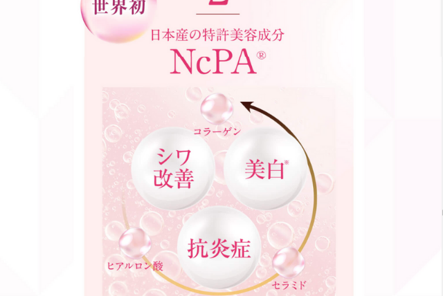 NcPAの説明