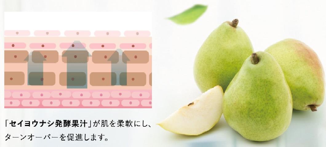 またあした、僕に含まれているセイヨウナシ発酵果汁の説明と洋ナシの写真